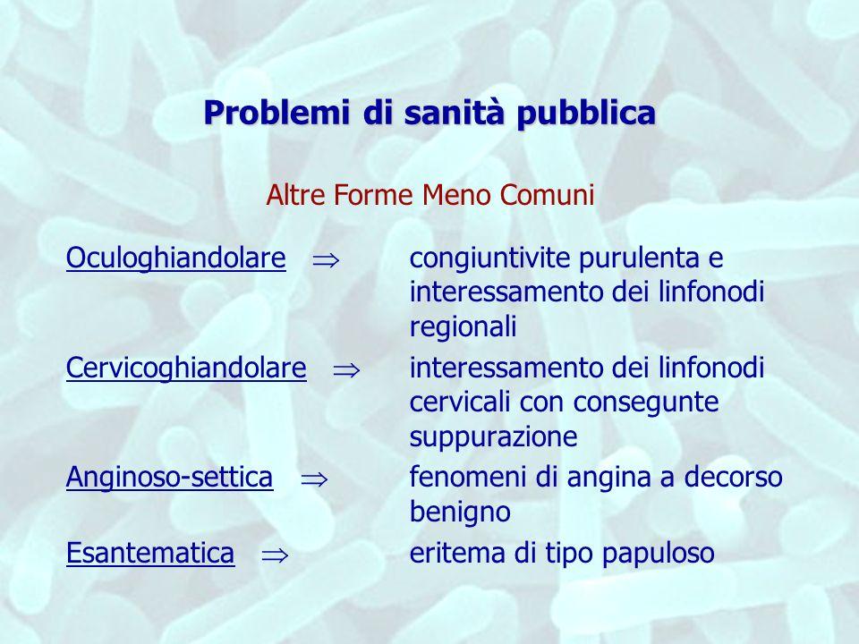 Problemi di sanità pubblica Oculoghiandolare congiuntivite purulenta e interessamento dei linfonodi regionali Cervicoghiandolare interessamento dei li