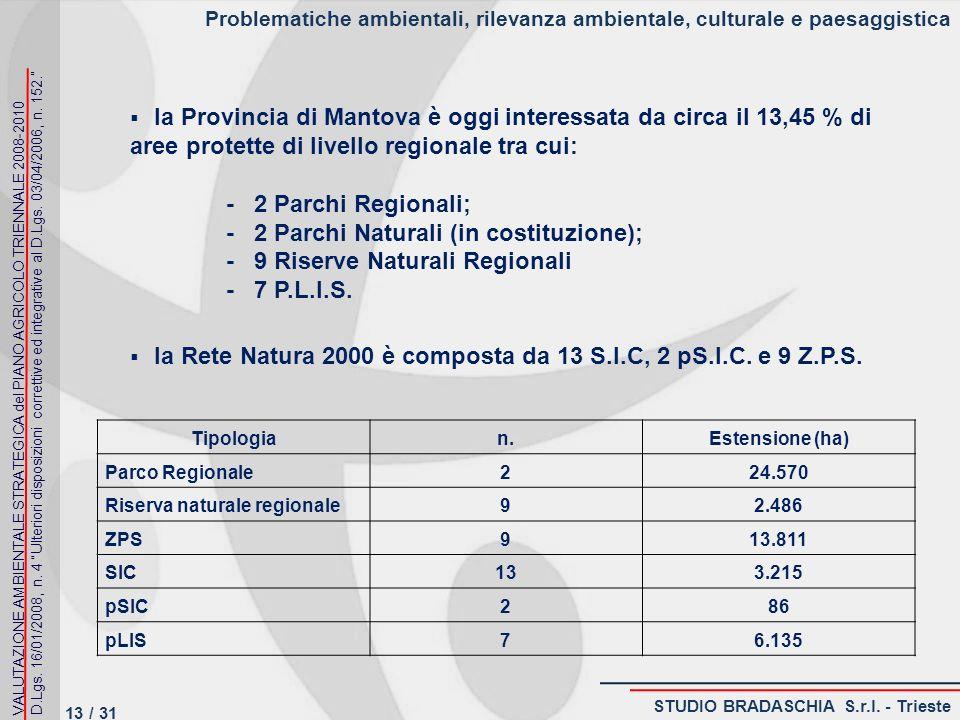 Problematiche ambientali, rilevanza ambientale, culturale e paesaggistica la Provincia di Mantova è oggi interessata da circa il 13,45 % di aree protette di livello regionale tra cui: - 2 Parchi Regionali; - 2 Parchi Naturali (in costituzione); - 9 Riserve Naturali Regionali - 7 P.L.I.S.