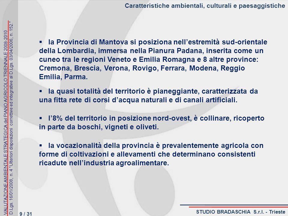 Problematiche ambientali, rilevanza ambientale, culturale e paesaggistica VALUTAZIONE AMBIENTALE STRATEGICA del PIANO AGRICOLO TRIENNALE 2008-2010 D.Lgs.