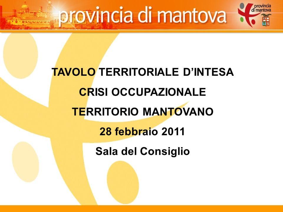 11 TAVOLO TERRITORIALE DINTESA CRISI OCCUPAZIONALE TERRITORIO MANTOVANO 28 febbraio 2011 Sala del Consiglio