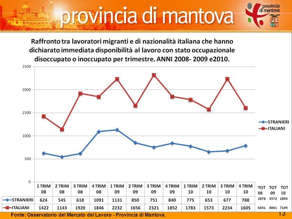 118 Fonte: Osservatorio del Mercato del Lavoro - Provincia di Mantova. 13