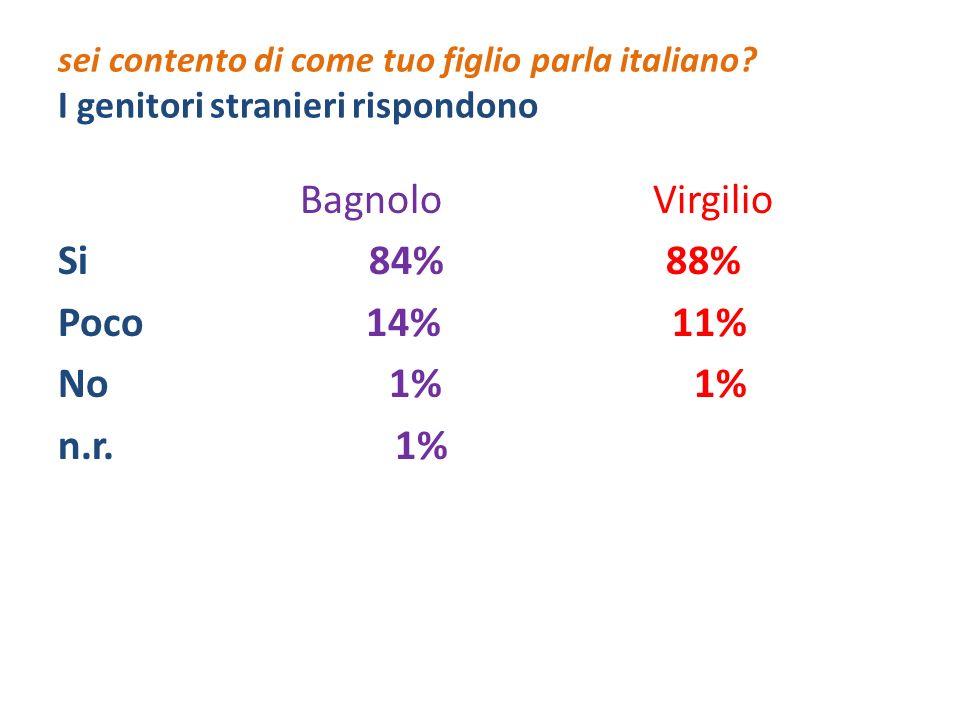 sei contento di come tuo figlio parla italiano? I genitori stranieri rispondono Bagnolo Virgilio Si 84% 88% Poco 14% 11% No 1% 1% n.r. 1%