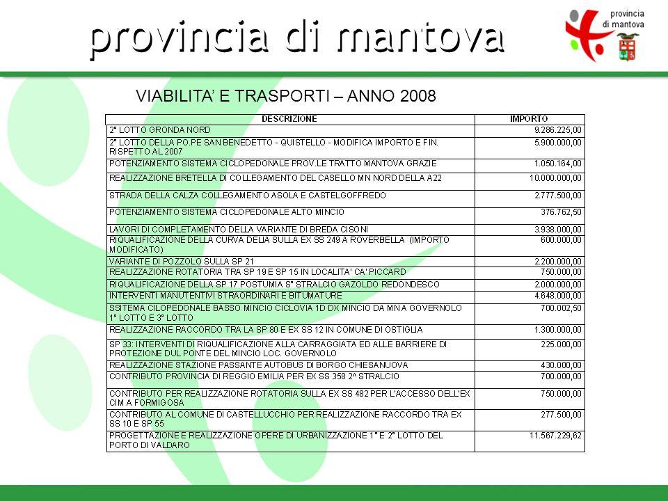 provincia di mantova VIABILITA E TRASPORTI – ANNO 2008