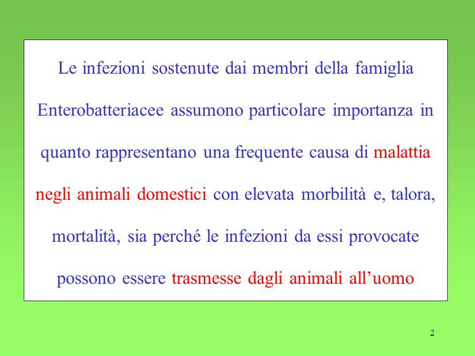 2 Le infezioni sostenute dai membri della famiglia Enterobatteriacee assumono particolare importanza in quanto rappresentano una frequente causa di ma