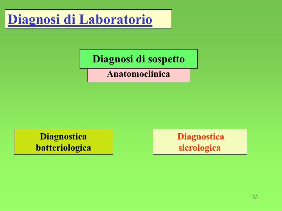 33 Diagnosi di Laboratorio Anatomoclinica Diagnosi di sospetto Diagnostica batteriologica Diagnostica sierologica