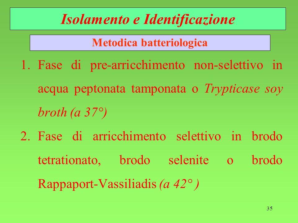 35 1.Fase di pre-arricchimento non-selettivo in acqua peptonata tamponata o Trypticase soy broth (a 37°) 2.Fase di arricchimento selettivo in brodo te
