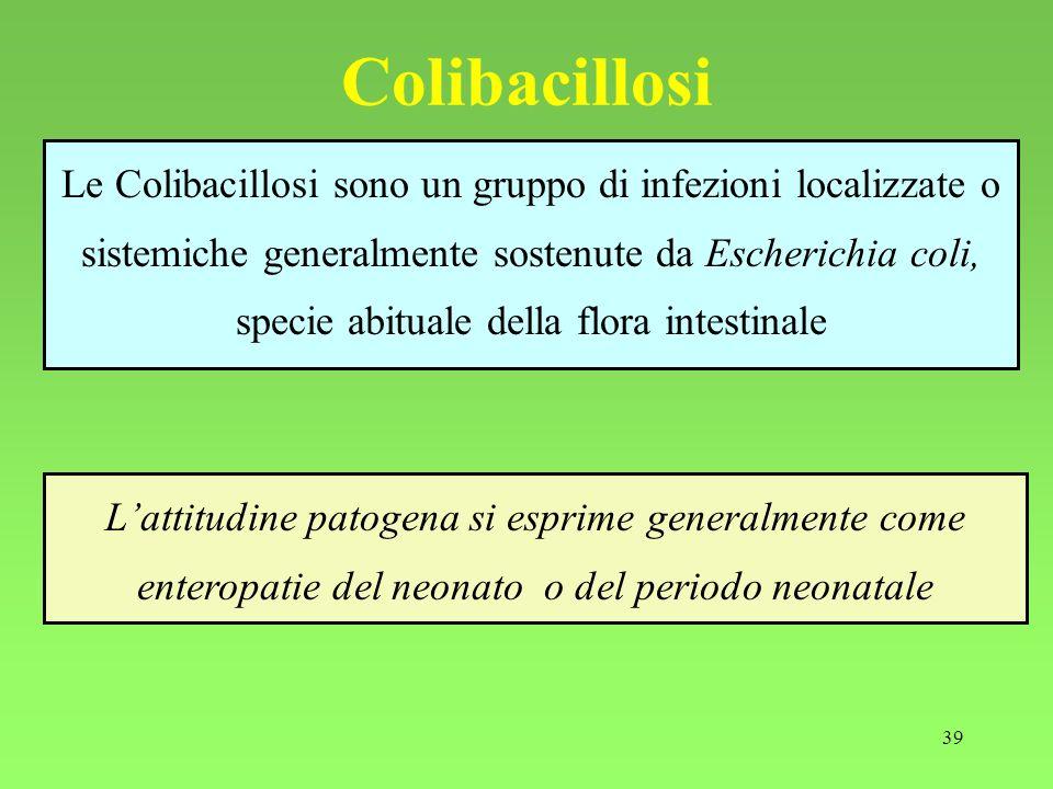 39 Colibacillosi Le Colibacillosi sono un gruppo di infezioni localizzate o sistemiche generalmente sostenute da Escherichia coli, specie abituale del