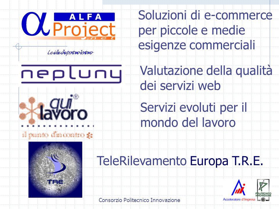 Consorzio Politecnico Innovazione Servizi evoluti per il mondo del lavoro Soluzioni di e-commerce per piccole e medie esigenze commerciali Valutazione della qualità dei servizi web TeleRilevamento Europa T.R.E.