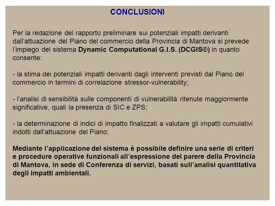 CONCLUSIONI Per la redazione del rapporto preliminare sui potenziali impatti derivanti dallattuazione del Piano del commercio della Provincia di Mantova si prevede limpiego del sistema Dynamic Computational G.I.S.