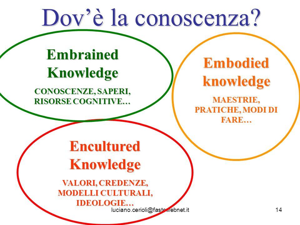 luciano.cerioli@fastewebnet.it14 Dovè la conoscenza? Encultured Knowledge VALORI, CREDENZE, MODELLI CULTURALI, IDEOLOGIE… Embrained Knowledge CONOSCEN