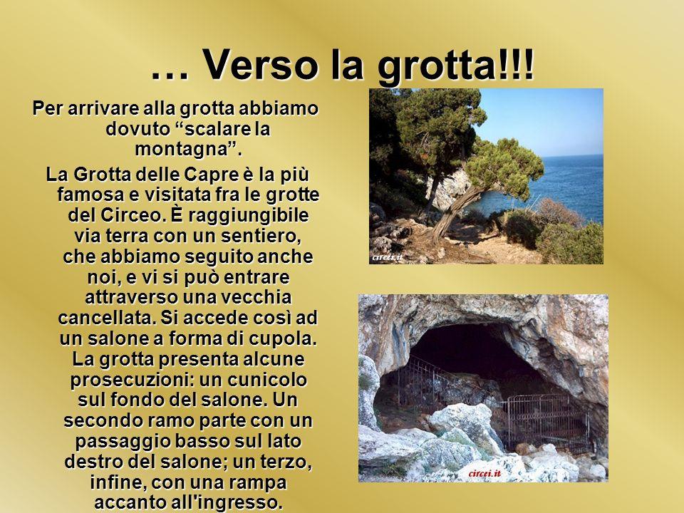 … Verso la grotta!!! Per arrivare alla grotta abbiamo dovuto scalare la montagna. La Grotta delle Capre è la più famosa e visitata fra le grotte del C