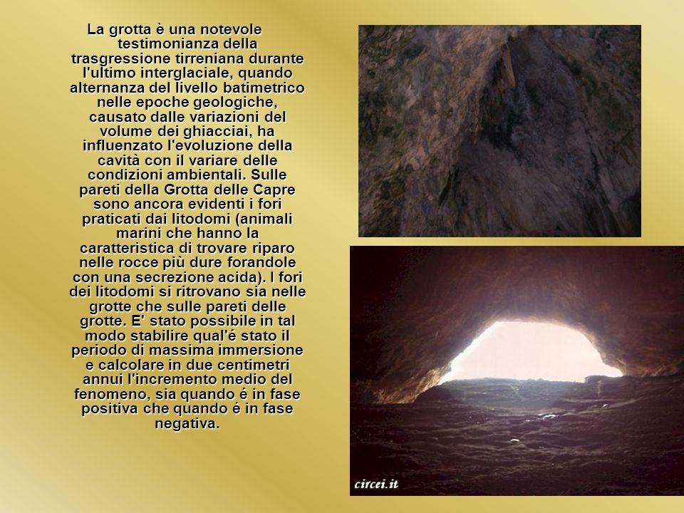 La grotta è una notevole testimonianza della trasgressione tirreniana durante l'ultimo interglaciale, quando alternanza del livello batimetrico nelle