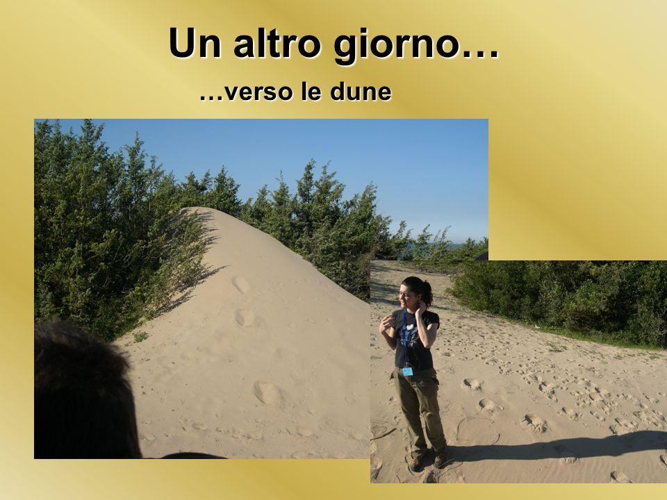 Un altro giorno… …verso le dune