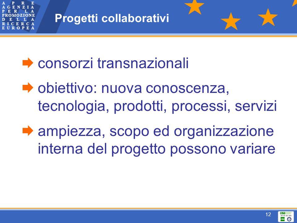 12 Progetti collaborativi consorzi transnazionali obiettivo: nuova conoscenza, tecnologia, prodotti, processi, servizi ampiezza, scopo ed organizzazione interna del progetto possono variare