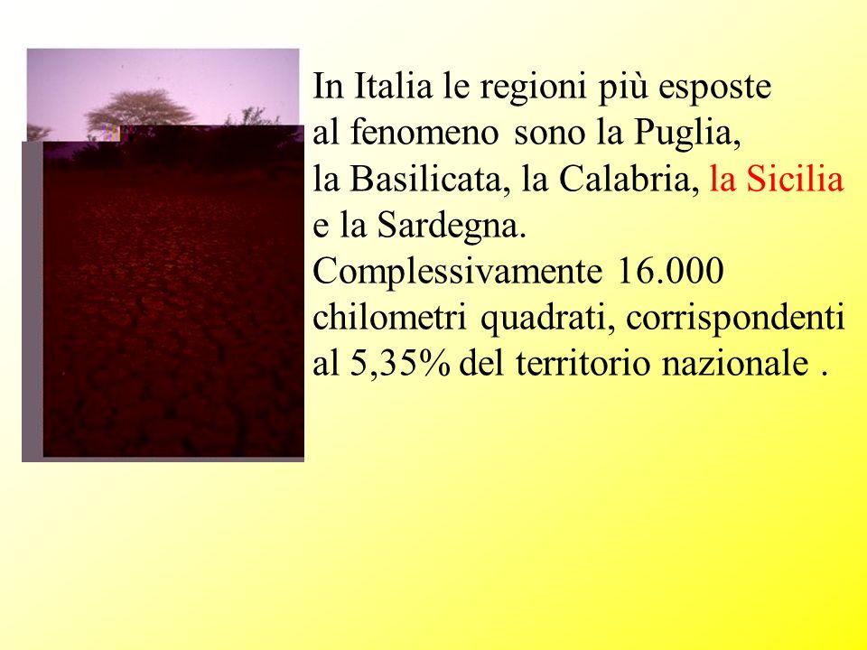 In Italia le regioni più esposte al fenomeno sono la Puglia, la Basilicata, la Calabria, la Sicilia e la Sardegna. Complessivamente 16.000 chilometri
