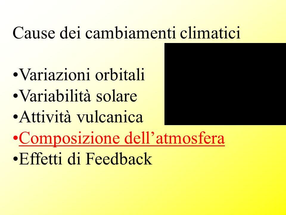 Cause dei cambiamenti climatici Variazioni orbitali Variabilità solare Attività vulcanica Composizione dellatmosfera Effetti di Feedback