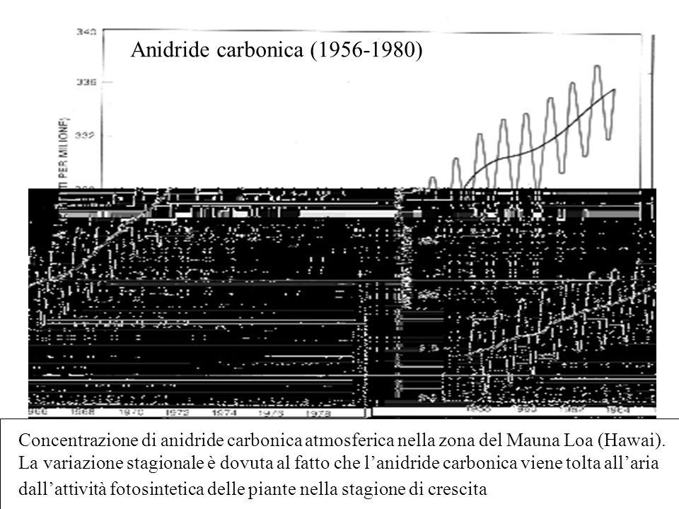 Anidride carbonica (1956-1980) Concentrazione di anidride carbonica atmosferica nella zona del Mauna Loa (Hawai). La variazione stagionale è dovuta al