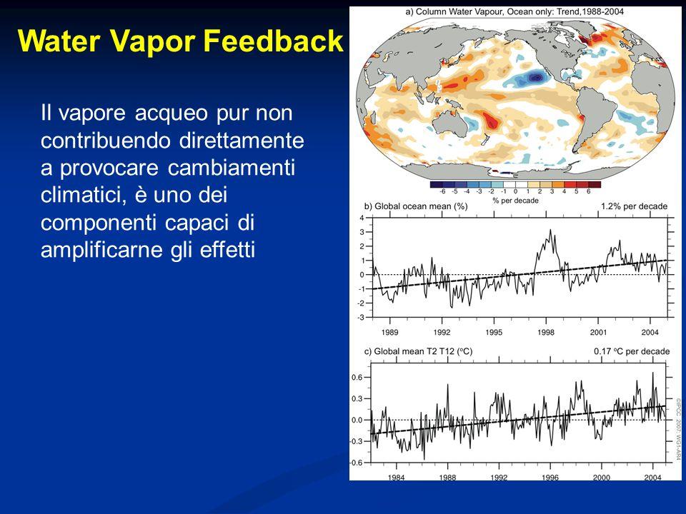 Il vapore acqueo pur non contribuendo direttamente a provocare cambiamenti climatici, è uno dei componenti capaci di amplificarne gli effetti Water Va