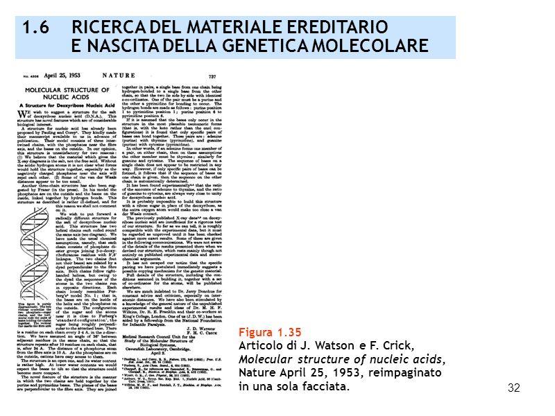 32 Figura 1.35 Articolo di J. Watson e F. Crick, Molecular structure of nucleic acids, Nature April 25, 1953, reimpaginato in una sola facciata. 1.6 R