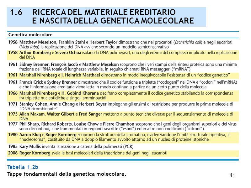 41 Tabella 1.2b Tappe fondamentali della genetica molecolare. 1.6 RICERCA DEL MATERIALE EREDITARIO E NASCITA DELLA GENETICA MOLECOLARE
