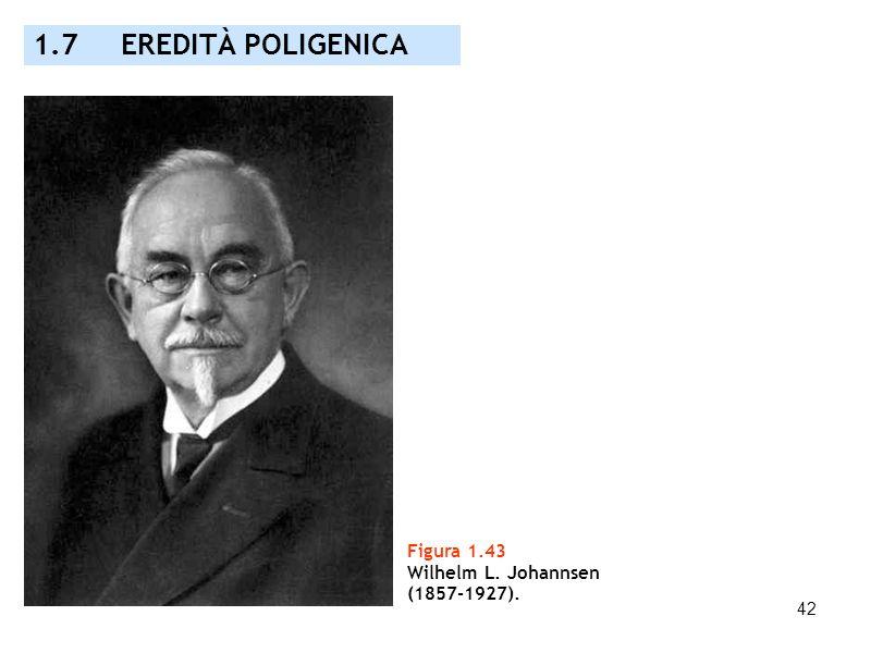 42 Figura 1.43 Wilhelm L. Johannsen (1857-1927). 1.7 EREDITÀ POLIGENICA