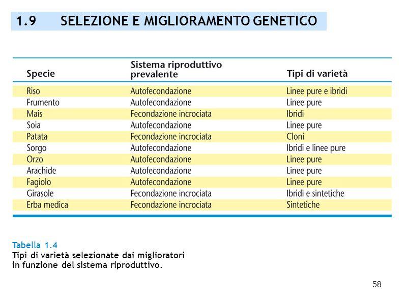 58 Tabella 1.4 Tipi di varietà selezionate dai miglioratori in funzione del sistema riproduttivo. 1.9 SELEZIONE E MIGLIORAMENTO GENETICO