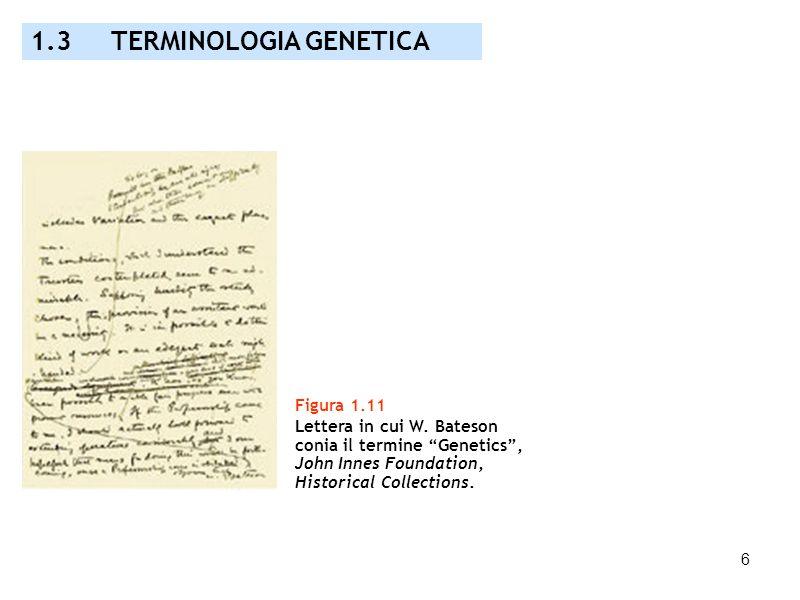 6 Figura 1.11 Lettera in cui W. Bateson conia il termine Genetics, John Innes Foundation, Historical Collections. 1.3 TERMINOLOGIA GENETICA