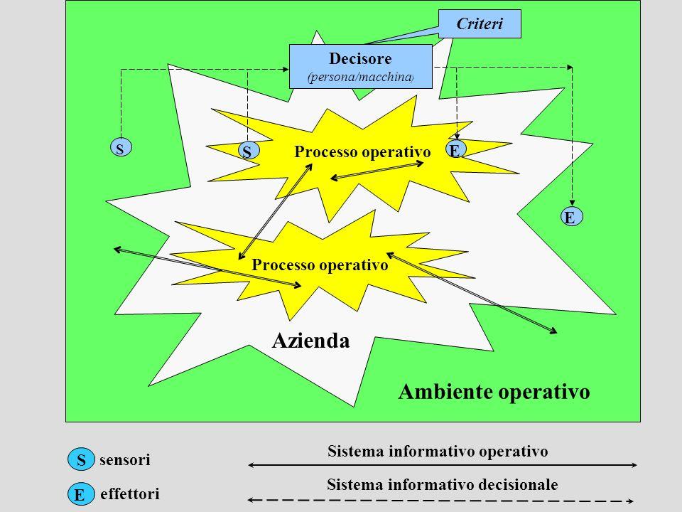 sensori effettori Sistema informativo decisionale Sistema informativo operativo Ambiente operativo S Processo operativo Azienda Criteri Decisore (pers