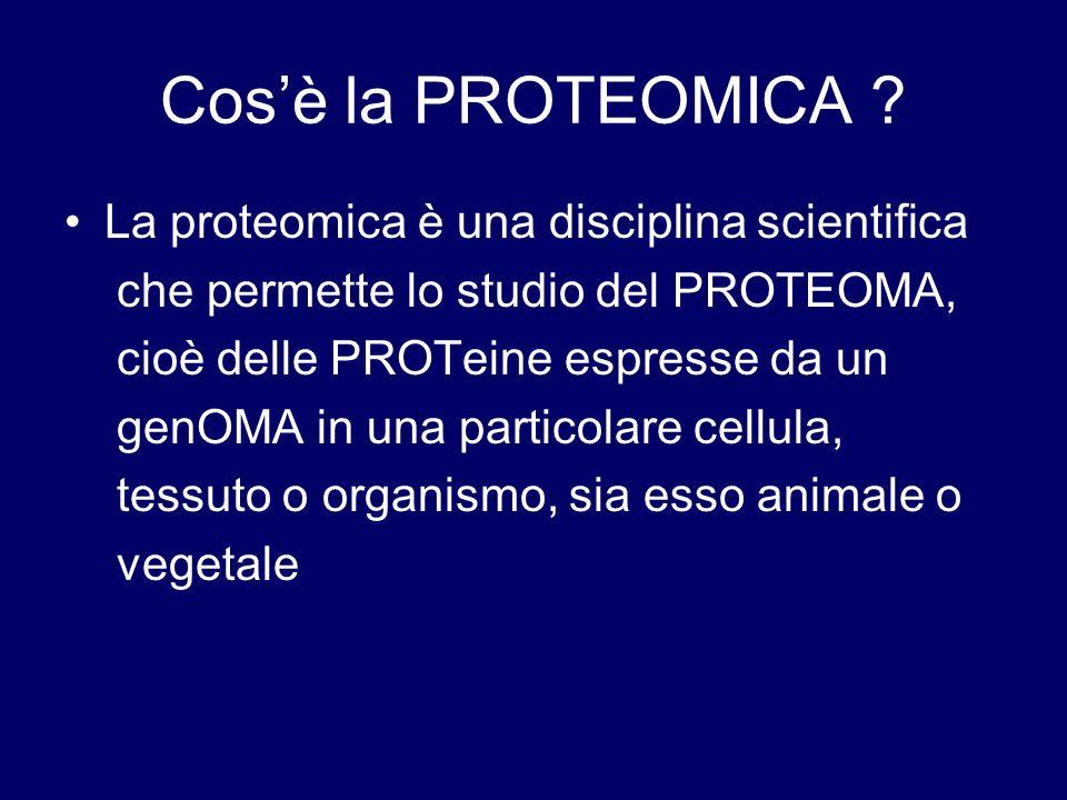 Cosè la PROTEOMICA ? La proteomica è una disciplina scientifica che permette lo studio del PROTEOMA, cioè delle PROTeine espresse da un genOMA in una
