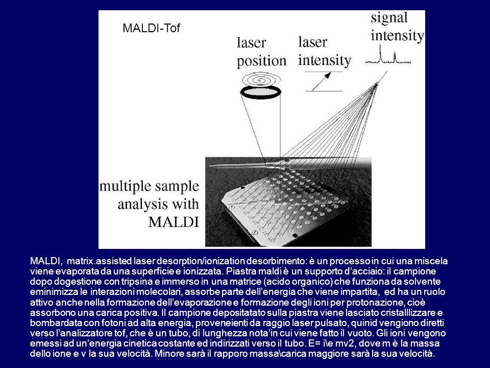 MALDI MALDI, matrix.assisted laser desorption/ionization desorbimento: è un processo in cui una miscela viene evaporata da una superficie e ionizzata.