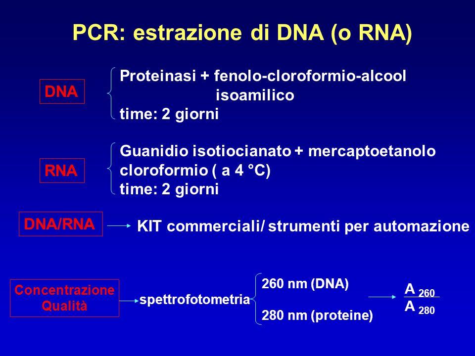 PCR: estrazione di DNA (o RNA) DNA RNA Proteinasi + fenolo-cloroformio-alcool isoamilico time: 2 giorni Guanidio isotiocianato + mercaptoetanolo cloro