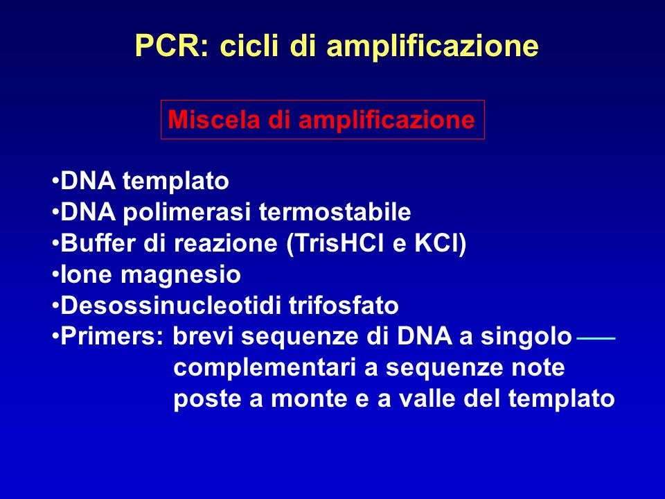 PCR: cicli di amplificazione Miscela di amplificazione DNA templato DNA polimerasi termostabile Buffer di reazione (TrisHCl e KCl) Ione magnesio Desos
