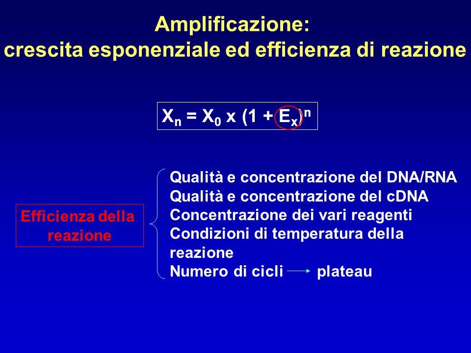 Amplificazione: crescita esponenziale ed efficienza di reazione X n = X 0 x (1 + E x ) n Efficienza della reazione Qualità e concentrazione del DNA/RN