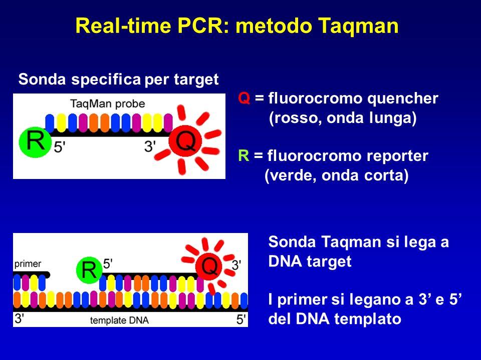 Real-time PCR: metodo Taqman Sonda specifica per target Q = fluorocromo quencher (rosso, onda lunga) R = fluorocromo reporter (verde, onda corta) Sond