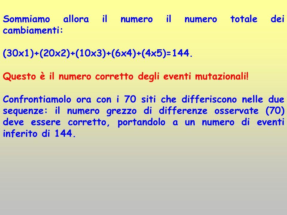 Sommiamo allora il numero il numero totale dei cambiamenti: (30x1)+(20x2)+(10x3)+(6x4)+(4x5)=144. Questo è il numero corretto degli eventi mutazionali