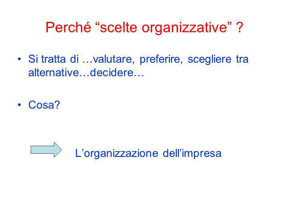 Perché scelte organizzative ? Si tratta di …valutare, preferire, scegliere tra alternative…decidere… Cosa? Lorganizzazione dellimpresa