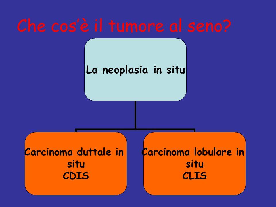 Che cosè il tumore al seno? La neoplasia in situ Carcinoma duttale in situ CDIS Carcinoma lobulare in situ CLIS