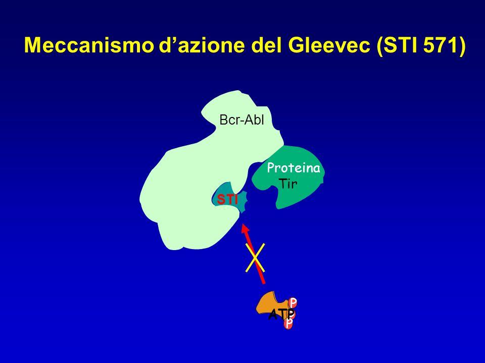 Bcr-Abl Meccanismo dazione del Gleevec (STI 571) Proteina Tir P P ATP P STI