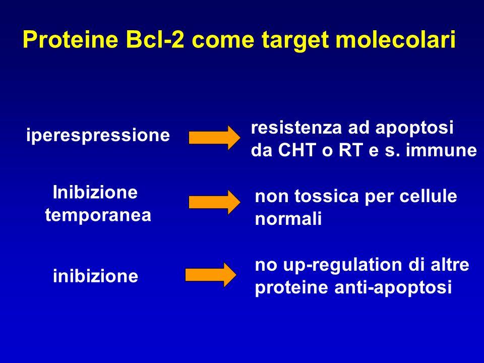 Proteine Bcl-2 come target molecolari iperespressione resistenza ad apoptosi da CHT o RT e s. immune Inibizione temporanea non tossica per cellule nor