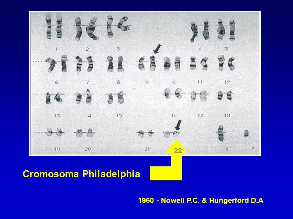 Cromosoma Philadelphia 22 1960 - Nowell P.C. & Hungerford D.A