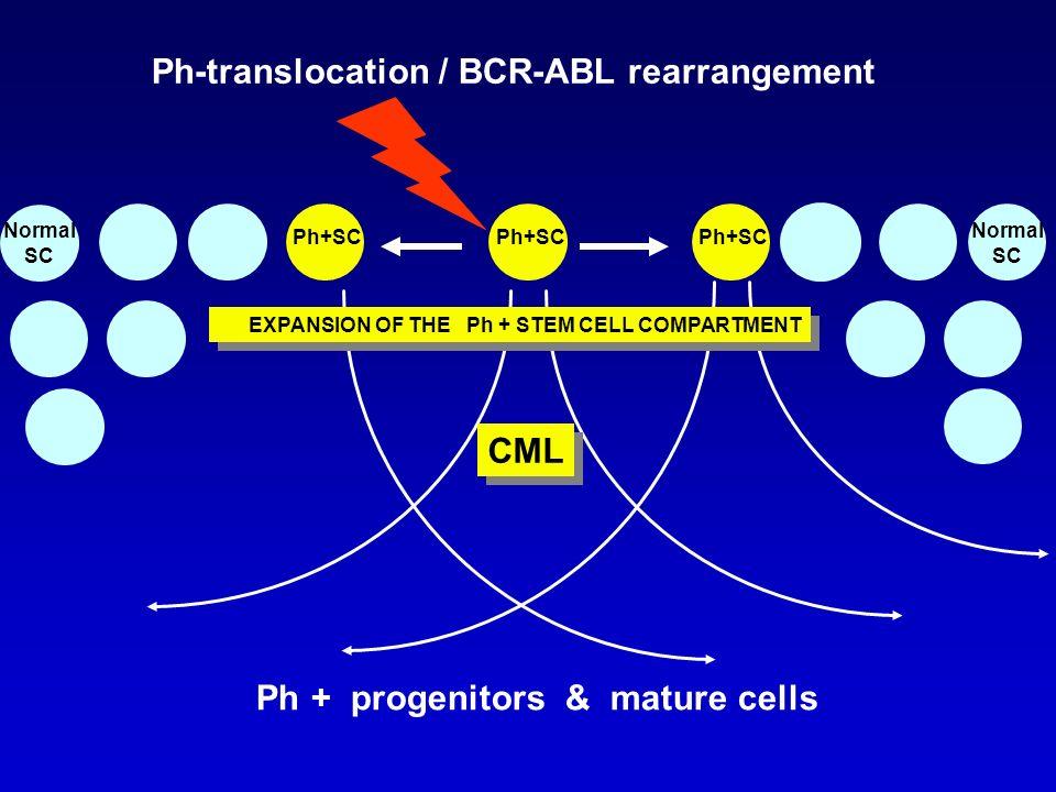 Il cromosoma Philadelphia è il marcatore caratteristico della LMC (presente in più del 95% dei casi), ma si ritrova anche: in circa il 30% delle LLA delladulto nel 2% delle LMA