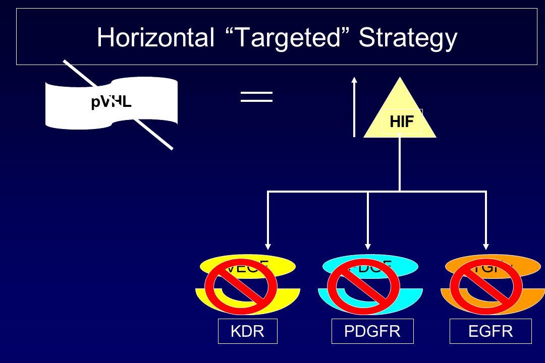 Horizontal Targeted Strategy pVHL HIF VEGFPDGF TGF KDRPDGFREGFR