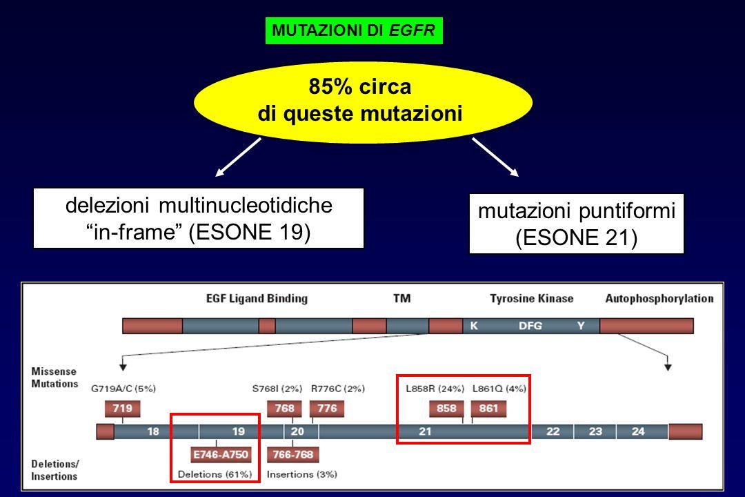 85% circa di queste mutazioni delezioni multinucleotidiche in-frame (ESONE 19) mutazioni puntiformi (ESONE 21) MUTAZIONI DI EGFR
