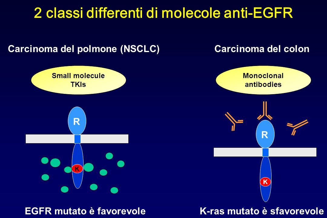 2 classi differenti di molecole anti-EGFR Small molecule TKIs Monoclonal antibodies R K R K K-ras mutato è sfavorevole Carcinoma del colonCarcinoma de