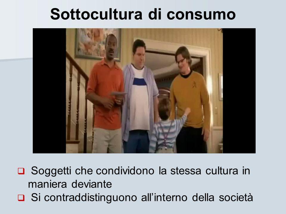 Sottocultura di consumo Soggetti che condividono la stessa cultura in maniera deviante Si contraddistinguono allinterno della società