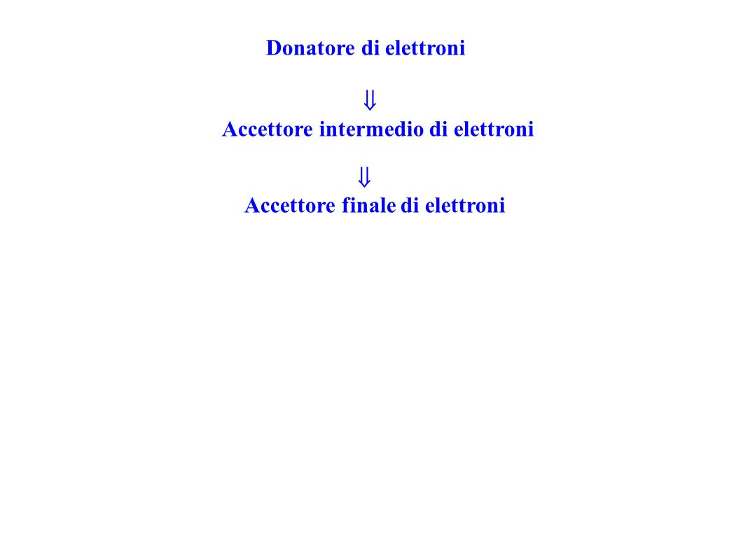 Donatore di elettroni Accettore intermedio di elettroni Accettore finale di elettroni