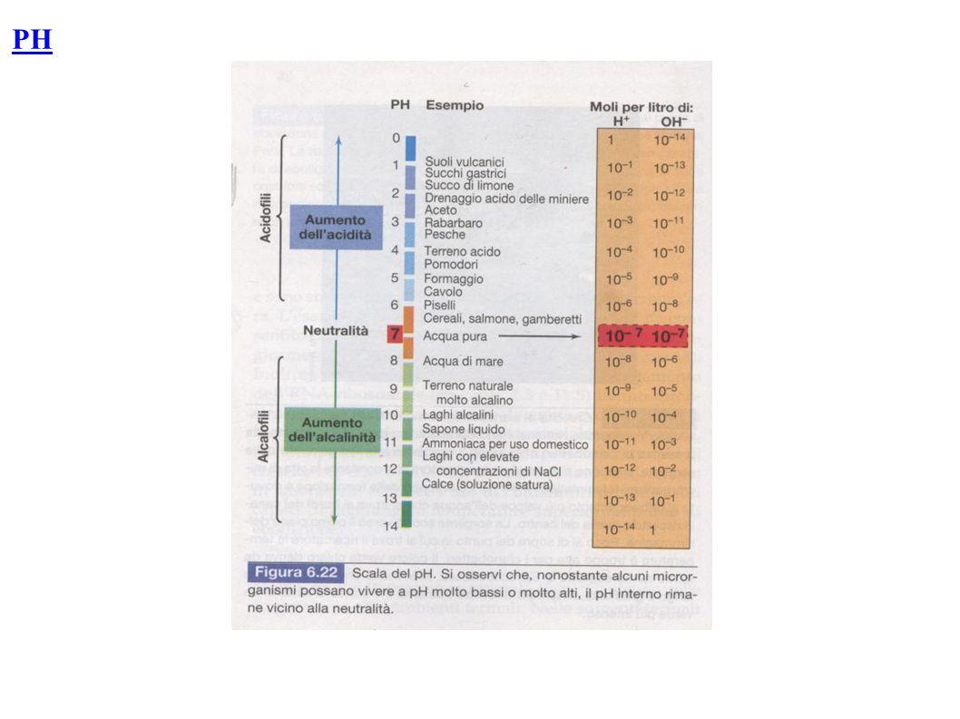 Limite pH Limite inferiore ottimale superiore ACIDOFILI Es.