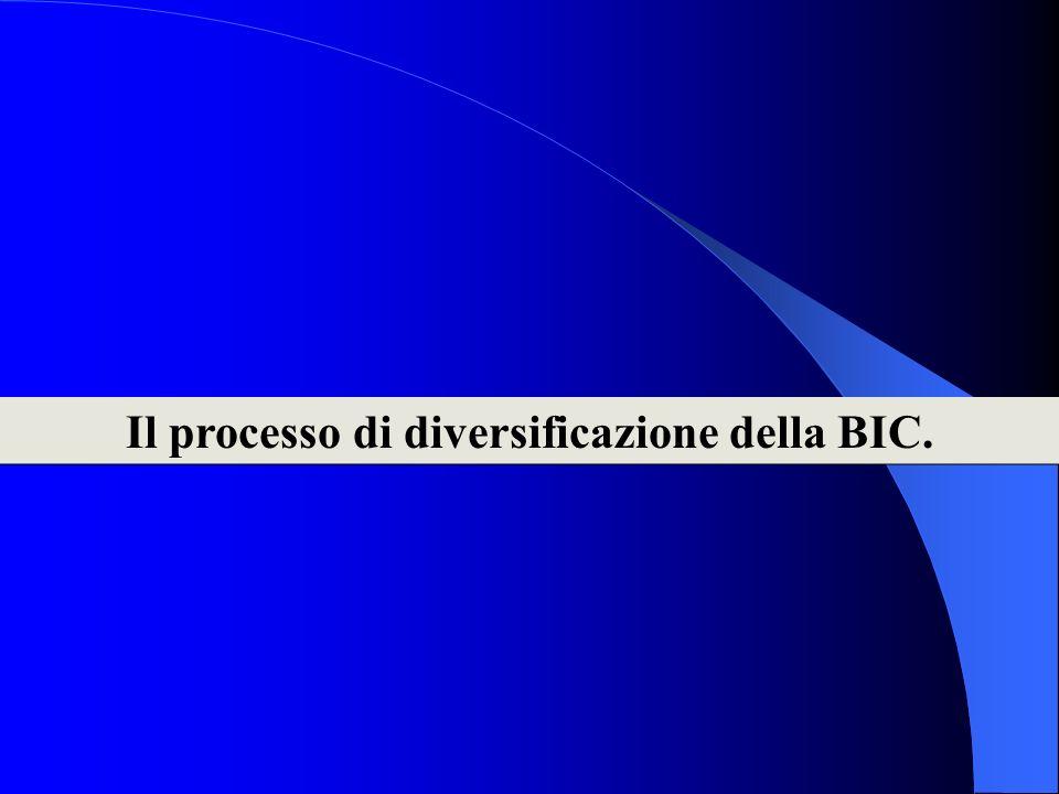 Il processo di diversificazione della BIC.
