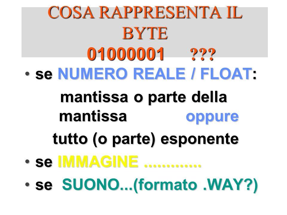 COSA RAPPRESENTA IL BYTE 01000001 ??? se NUMERO REALE / FLOAT:se NUMERO REALE / FLOAT: mantissa o parte della mantissa oppure tutto (o parte) esponent