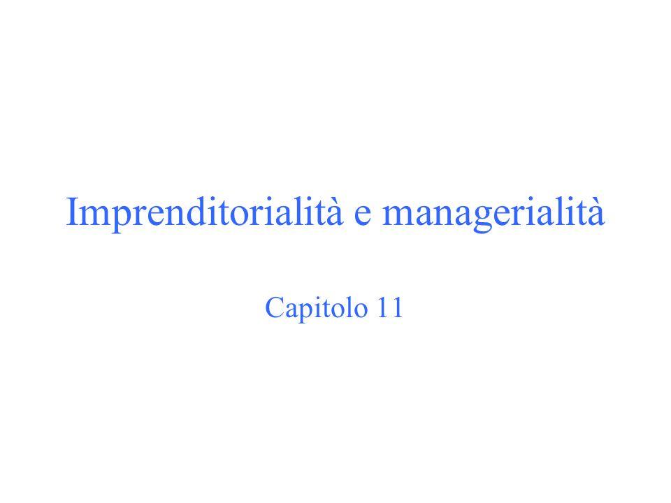 Imprenditorialità e managerialità Capitolo 11